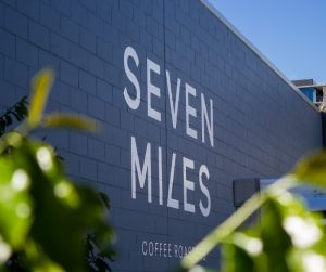 seven-miles-albion